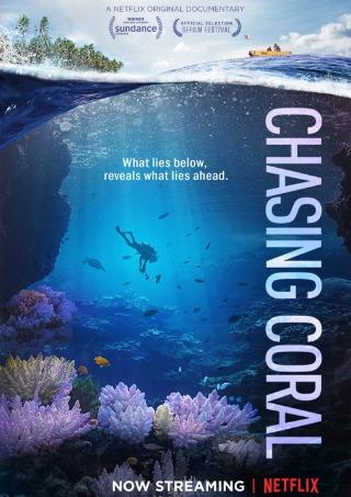 チェイシング・コーラル 消えゆくサンゴ礁