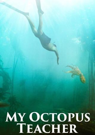 オクトパスの神秘 海の賢者は語る